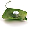 Gyford-StandOff-Systems-E-Fax-Go-Green-sm